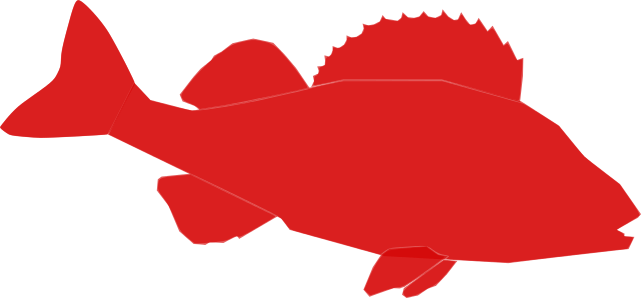 Red Perch Shop